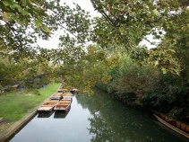 Punting rafts (see next section for more photos from our punting adventure!)